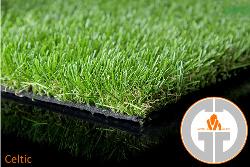 dublin-grass